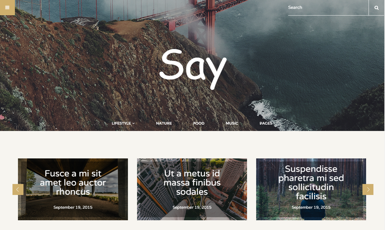 Say Theme Wordpress